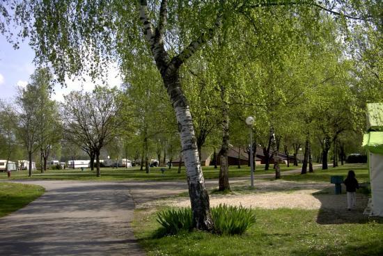 camping 2008 004
