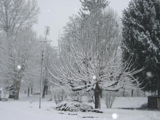 19-dec-2011-42.jpg